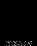 peter-sadowskiphotographer-logo